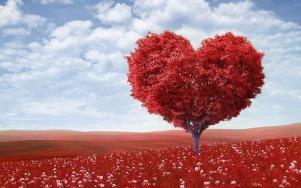 heart-shape-1714807_640